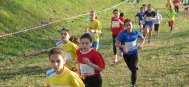 Domani a Pavullo riparte il campionato provinciale unitario di cross